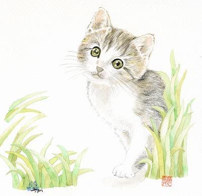 仔猫201208