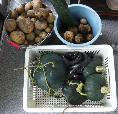 2014収穫物