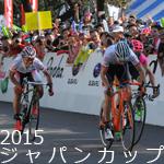 2015ジャパンカップ