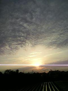 20060923_226352.jpg