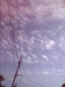 20061118_249534.jpg