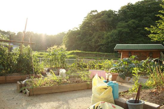 まるか農園