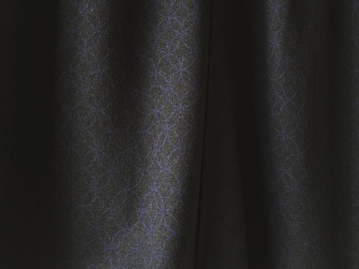 BLUE BLUE JAPAN/コンプレスドウール シッポウペンシルスカート