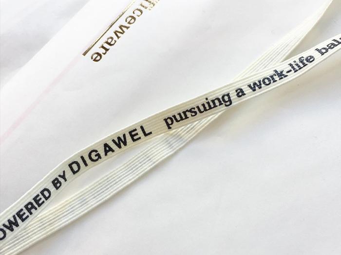 DIGAWEL/JIFFY BAG(5 PIECES)