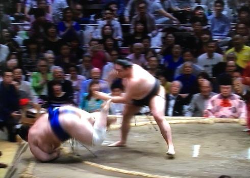 竜電 vs 碧山