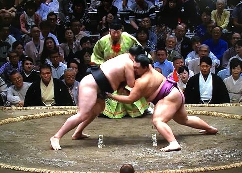 竜電 vs 朝乃山