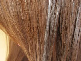 髪の毛にべっとりと塗る