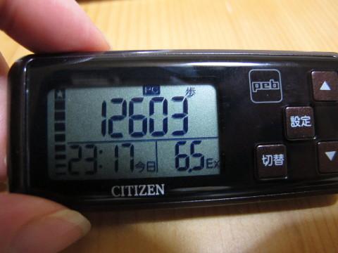 1月25日の歩数、12,603歩!