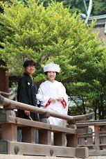 緑の吉備津彦神社