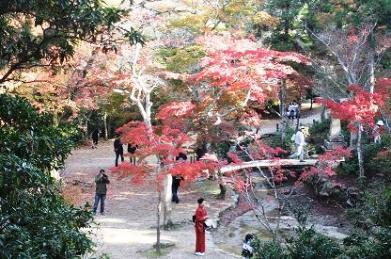 紅葉の四宮神社