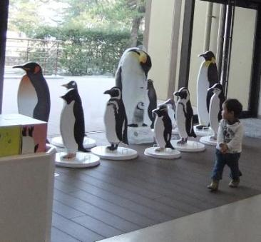 ペンギンみたいな僕