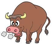怒っている?牛