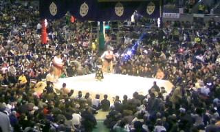 大相撲14日目