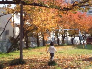 24日公園.jpg