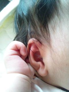 6日予防接種.jpg