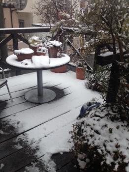 雪降り始め初日!