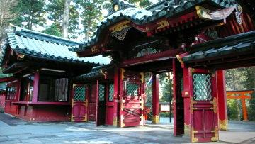 Vol.307 パワースポット 神々の木の下で 〜 箱根神社