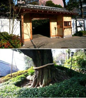 Vol.323 若冲「羅漢石」に出会う 〜 目白 椿山荘
