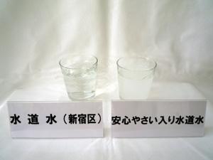 20111109_2069836.jpg