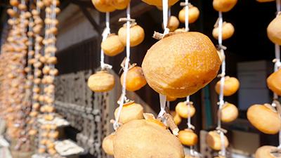 国指定重要文化財 小野家住宅納屋の干し柿