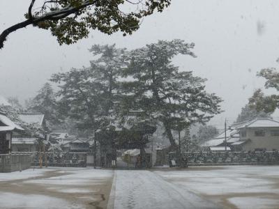 雪の善通寺