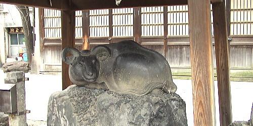 牛嶋神社 撫牛
