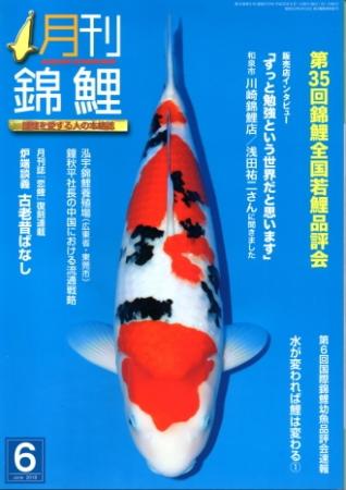 月刊錦鯉2018 6月号 No.373