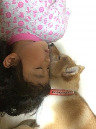 次女と柴犬のきな子