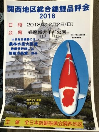 関西地区総合錦鯉品評会2018