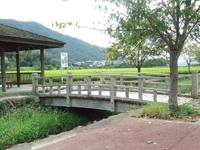 国産材の橋