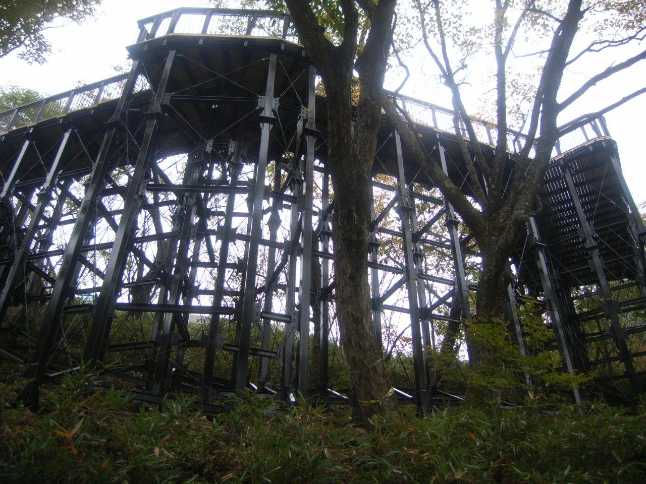 観瀑台下から