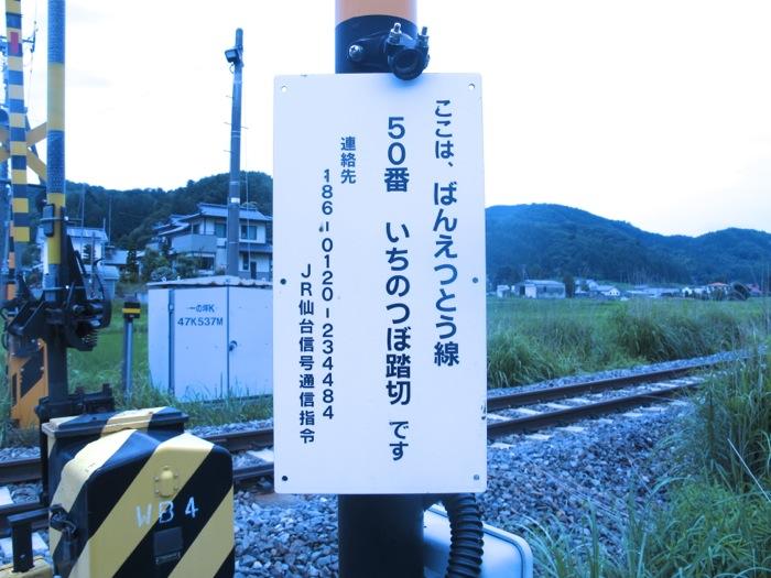 IMG_5396.jpg