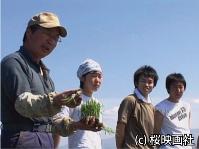 私の農業体験