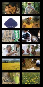 IFOF2012 上映作品カット