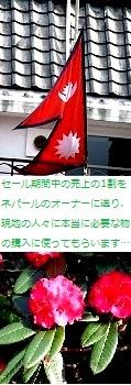 ♪150501pop3.jpg