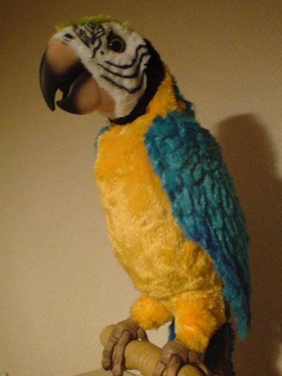 DRITT DRITTEL 鳥 オウム