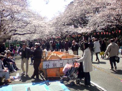 上野 お花見