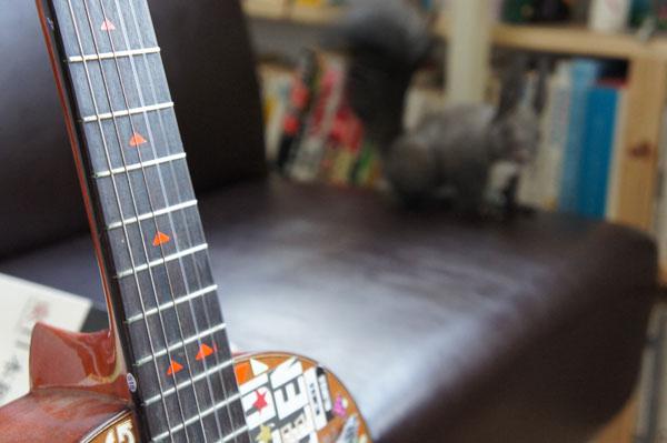 エゾリス ギター ペリー