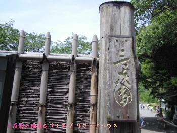 三渓園の睡蓮&サツキ