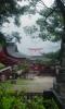 神社の裏からの大鳥居