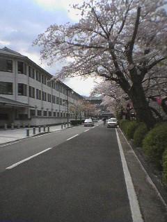 小田原城お堀端の三の丸小学校