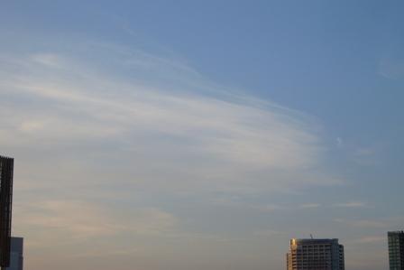 20110909-5.JPG