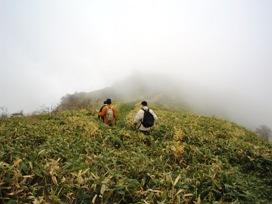 神山をゆく