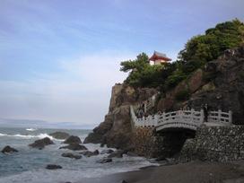 桂浜の海岸