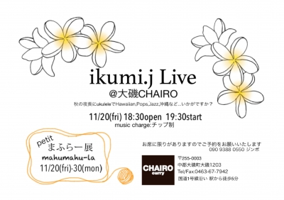 JINBO live