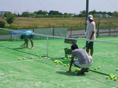 ウィルテニススクール1番コート