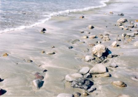 まだらの砂浜