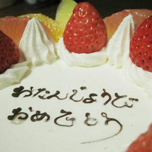 ベンガルゆきむら / シュガー網の誕生日