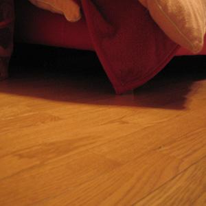 わんこ猫ゆきむら/ルビちゃんちのベッドの下