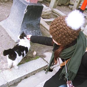 わんこ猫ゆきむら/旅行